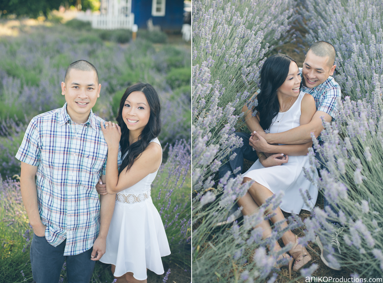 sauvie-island-engagement-lavender-farm4t