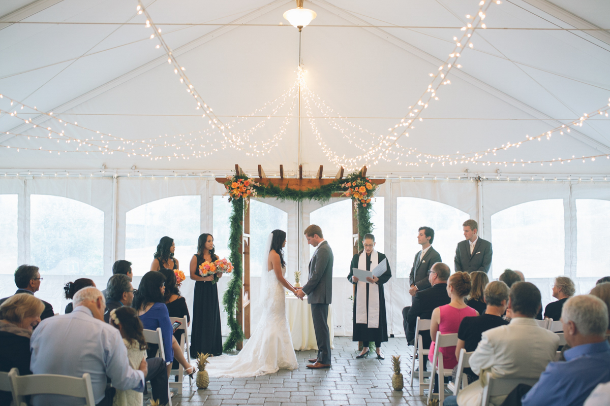 the aerie at eagle landing wedding pics